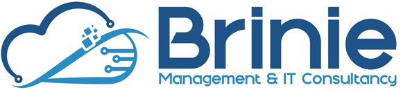 Brinie Management & IT Consultancy Logo